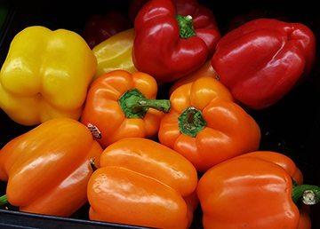 bell_pepper_small